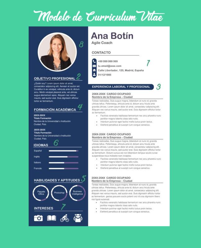 CV profesional modelo para descargar